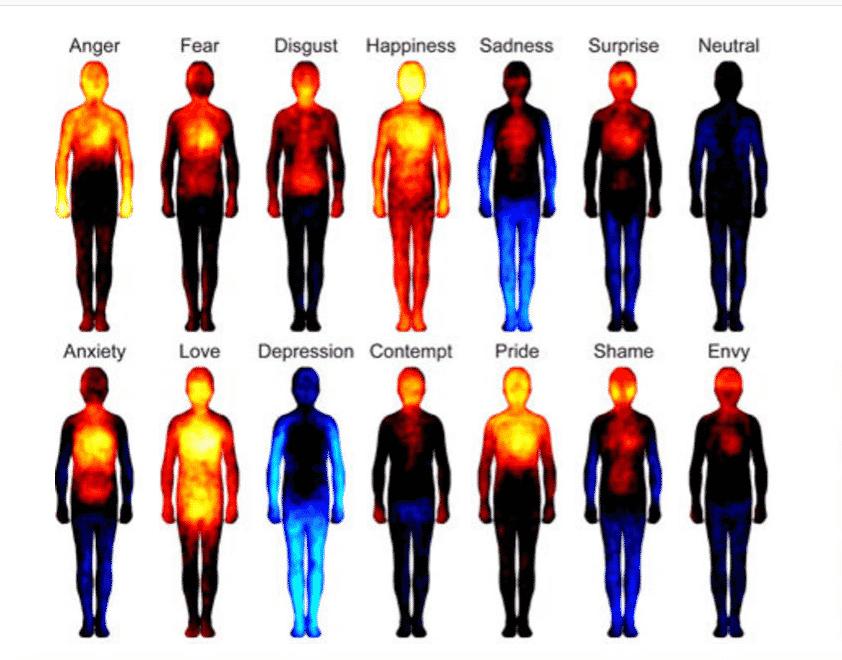 Gefühle zeigen sich im Körper