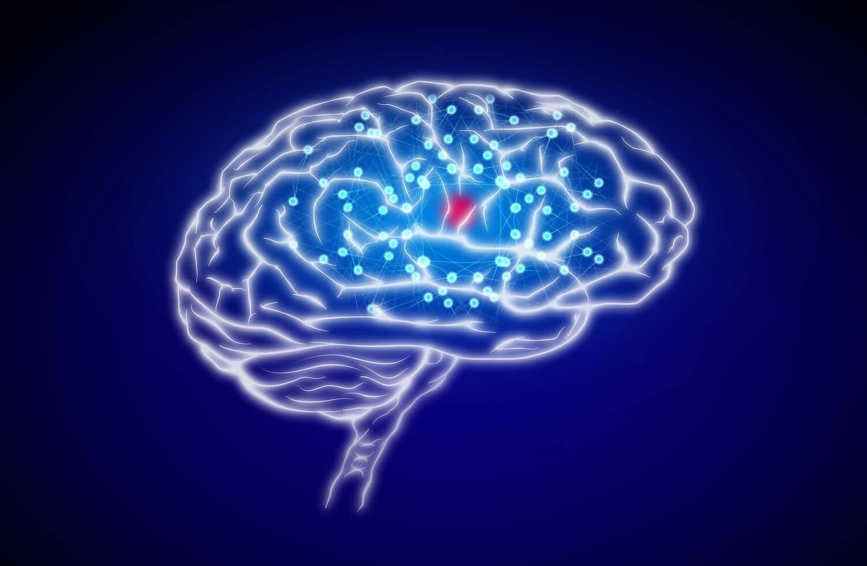 Coaching gegen Stress, Gehirnsache